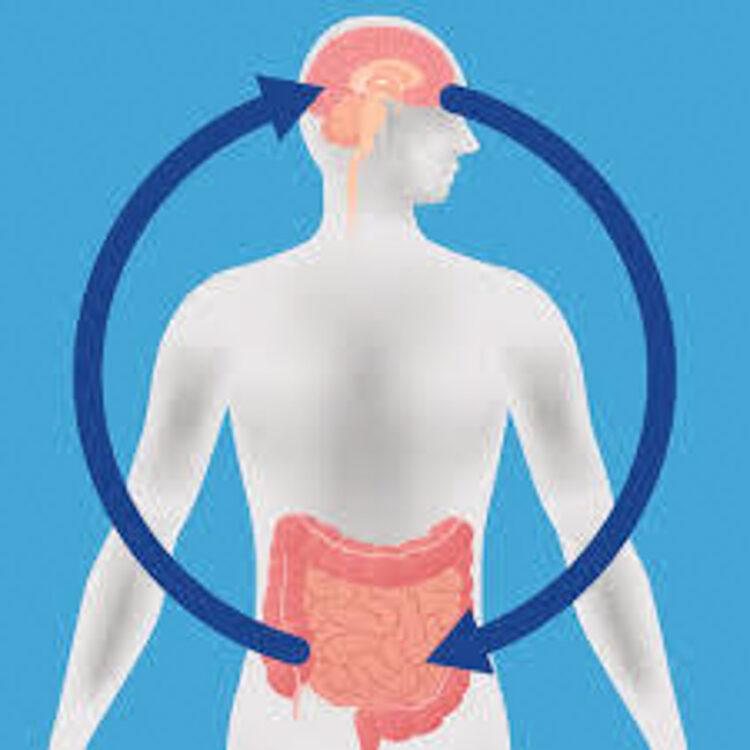 สถาปัตยกรรม ชุมชนแบคทีเรีย หนทางสร้างงานออกแบบที่ตอบโจทย์ทุกจุลชีพในร่างกายมนุษย์, ไมโครไบโอม