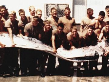 คุยกับผู้เก็บชิ้นส่วน Oarfish ปลาพญานาค ในภาพถ่ายดัง 24 ปีก่อนที่ดูแลปลาตัวนี้ถึงปัจจุบัน