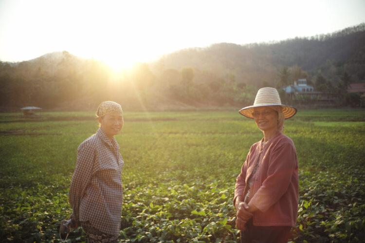 เป๊ก-นิว คู่รักที่ลงมือดำและทำร้านอาหารในทุ่งนาสองสีเพื่อส่งเสริมการเรียนรู้เรื่องข้าว