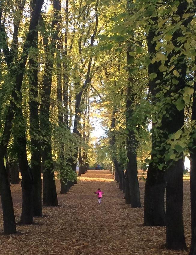John Didj Coles รุกขกรราชสำนักนอร์เวย์ ผู้ดูแลต้นไม้ในราชสำนักทุกต้นกับสวนสาธารณะที่ใหญ่ที่สุดในออสโล