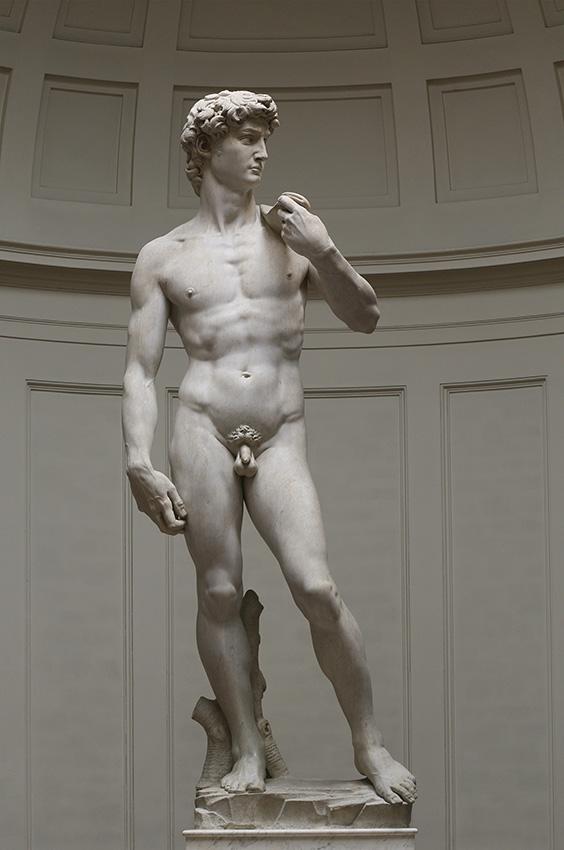 David สัญลักษณ์ของความแข็งแกร่งและความงามที่อ่อนเยาว์, มีเกลันเจโล, Michelangelo