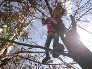 SIP Knallerbse รร.ที่ไม่ขังเด็กในห้อง แต่ปล่อยวิ่งเล่นในป่าและหาตัวเองด้วยการฝึกงาน, เมืองกลาส ประเทศออสเตรีย