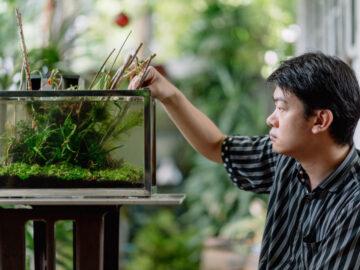 วิธีจัดตู้ไม้น้ำ ย่อธรรมชาติลำธาร หนอง คลอง บึง ทุ่งน้ำท่วมไทยไว้ในบ้าน