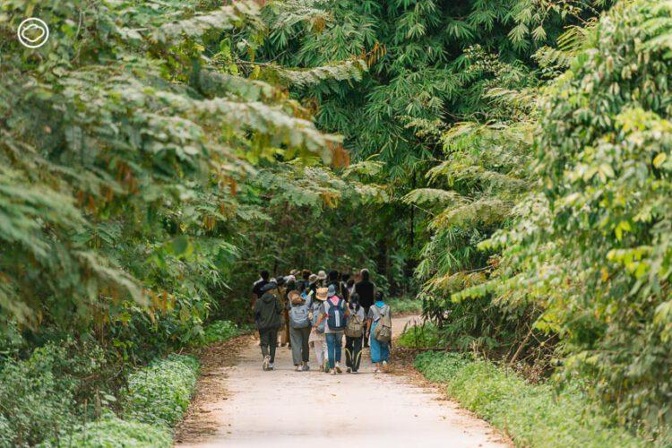 สำรวจ 7 ธรรมชาติฟื้นตัวหลัง COVID-19 กับ Jungle Rumble ที่ชี้ว่าแก่งกระจานยังสมบูรณ์