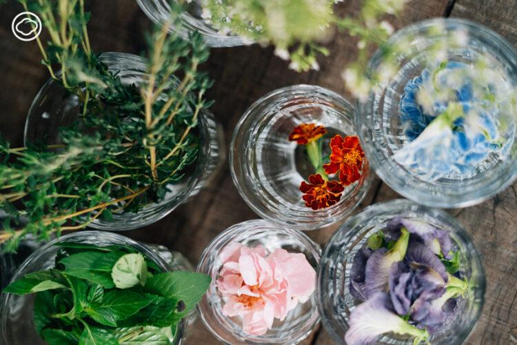 สอนทำชอร์ตเบรดดอกไม้ ของว่างยามบ่ายที่อร่อย ทำง่าย และหน้าตาดี