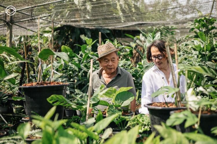 ทายาทชาวสวนรุ่น 4 ผู้เปลี่ยนสวนเก่าให้เป็น Little Tree Garden และ Whispering Cafe