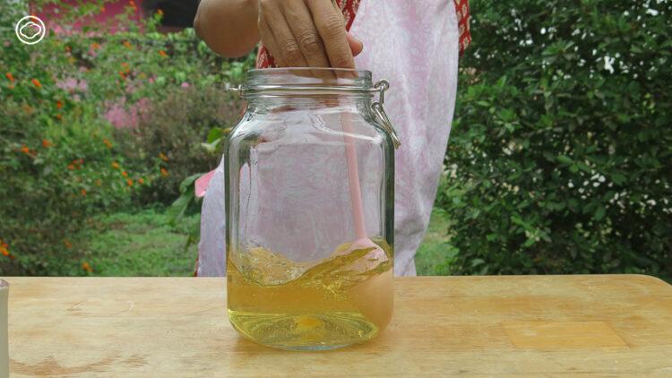 สอนทำคีเฟอร์น้ำ เครื่องดื่มรสหวานซ่า ศาสตร์โบราณแทนน้ำอัดลม