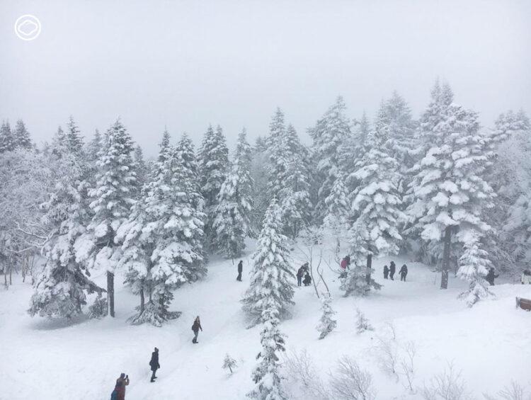 เภสัชกรหนุ่มขึ้นกระเช้าลอยฟ้า 2 ชั้นแห่งแรกในญี่ปุ่น ท่องภูเขาหิมะที่ Shinhotaka Ropeway