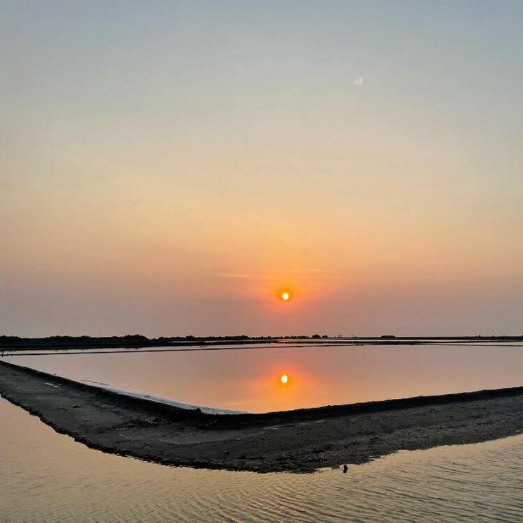 บ้านปากทะเล ความสำเร็จของคนรักนกทั่วไทย ที่ลงขันซื้อที่ดินนาเกลือให้นกอพยพ
