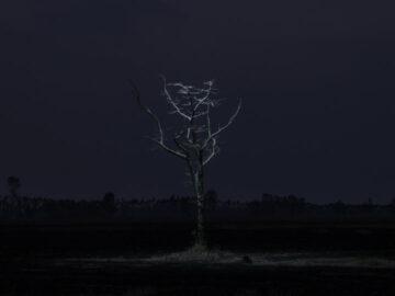 Into The Night ชุดภาพถ่ายทิวทัศน์ยามค่ำคืนระหว่างทางกลับบ้านของชายหนุ่ม