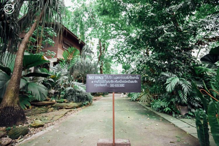 382space โคราช บ้านครึ่งปูนครึ่งไม้ใต้ร่มเงาสวนป่า ที่สองคู่รักและคุณพ่อสร้างเองกับมือ