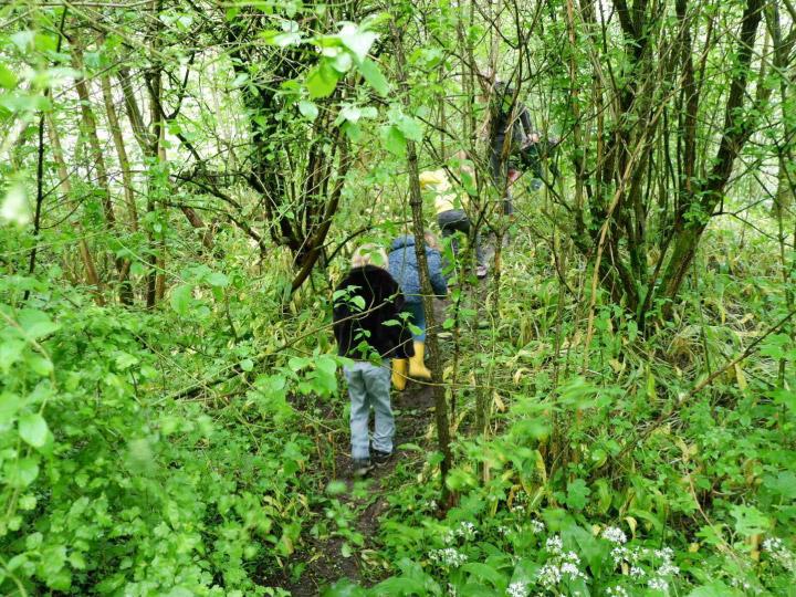 ตามครูอาสาและเด็กประถมวัยไปเรียนวิชา Alles Groeit ในห้องเรียนกลางป่าเนเธอร์แลนด์ ที่ปลูกฝังให้อยู่ร่วมและรักษาทรัพยากรธรรมชาติ