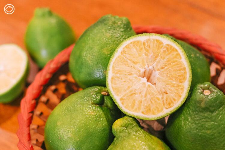 04 ส้มจุกจะนะ ส้มมงคลพื้นเมืองจังหวัดสงขลา