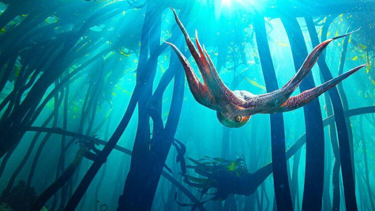 ชวนสำรวจและตั้งคำถามต่อสิ่งแวดล้อมรอบน้ำไปกับ 5 ภาพยนตร์ ที่ว่าด้วยเรื่องความสัมพันธ์ของสิ่งมีชีวิตกับแหล่งน้ำ เนื่องในวันอุทกศาสตร์โลก