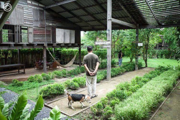 บ้านกรอด้าย : โรงงานทอผ้าสู่เกสต์เฮาส์สงบบนเกาะอยุธยา ที่ชวนแขกทำสมาธิและเจริญสติ