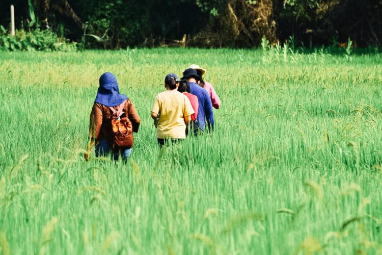 บัณฑิต อินณวงศ์ ที่ปรึกษาผู้ใช้งานวิจัยพัฒนาธุรกิจอาหารชุมชนกว่า 100 แห่งให้เติบโต