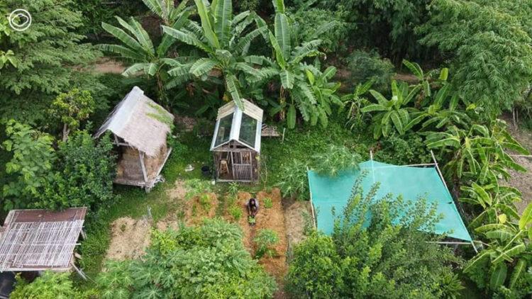 ธนาคารเมล็ดพันธุ์และโรงเรียนพืชพันธุ์พื้นบ้านของ วันทนา ศิวะ นักต่อสู้เพื่ออิสรภาพในการปลูกพืชผลของเกษตรกรอินเดีย
