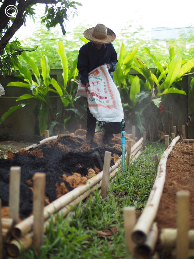 วิชาสร้างวัฏจักรดินดี เติมพลังให้ดินด้วยการรีไซเคิลวัสดุธรรมชาติรอบบ้าน