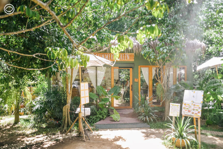 Summer Green cafe, คาเฟ่กลางสวนทุเรียนในชุมชนวัดเจดีย์คีรีวิหาร เมืองลับแล