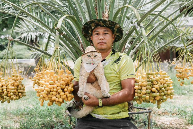 'edward10516 เอ็ดเวิร์ด' เพจเล่าเรื่องแมวนักเดินทางที่ตั้งใจเป็นความสุขทุกวันให้เหล่าทาส
