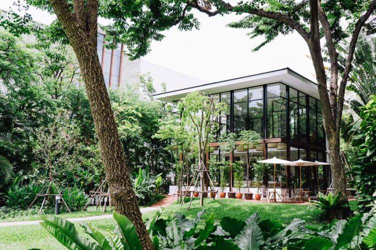 MiVana กาแฟอินทรีย์รักษ์ป่าที่เปิด Flagship Store เพื่อให้คนและป่าเติบโตด้วยกันอีก 100 เท่า
