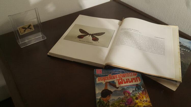 ศิลปะเรื่องสัตว์สูญพันธ์ุในแกลเลอรี่บ้านเก่าของ นพ. บุญส่ง เลขะกุล ผู้ผลักดัน พรบ.คุ้มครองสัตว์ป่าและอุทยานแห่งชาติ