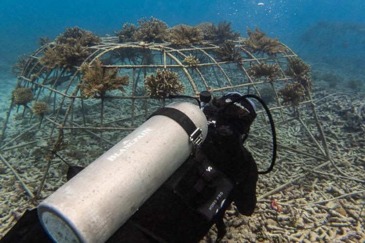 เส้นทาง 286 ปีของนาฬิกาสัญชาติสวิตฯ ที่มองไกลมากกว่าบอกเวลา แต่อยากรักษาและรับผิดชอบต่อมหาสมุทร
