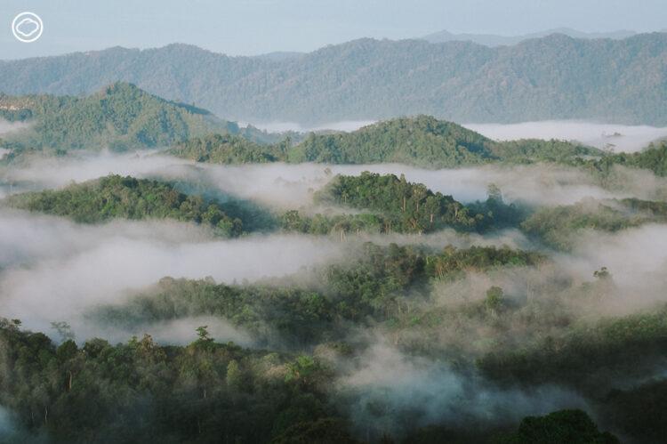 รู้จักเสน่ห์ดั้งเดิมของนราธิวาส ผ่าน 7 แหล่งท่องเที่ยวทางวัฒนธรรมและธรรมชาติ ตั้งแต่ในเมือง ถึงผืนป่าและทะเล