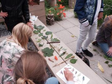 ตามเด็กๆ ประถมไปเรียนวิชาความหลากหลายทางธรรมชาติ ในห้องเรียนกลางป่าเนเธอร์แลนด์