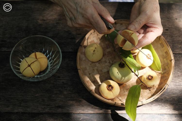 เก็บลูกจันหล่นไม่ไกลต้นในฤดูฝน มาทำบัวลอยหอมอุ่นกินกัน
