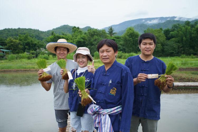 ข้าวดอย Local Superfood จากภูเขา ทางเลือกใกล้ตัวคนไทยในวิถีการกินเพื่อให้อายุยืน