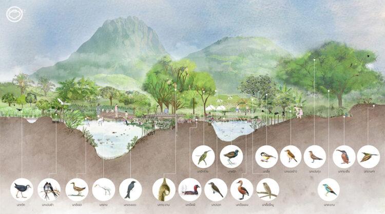 งานออกแบบพื้นที่ให้มนุษย์ได้ฟื้นสัมพันธ์กับธรรมชาติของใจบ้านสตูดิโอ ที่ได้รับบรีฟเป็นบทกวี