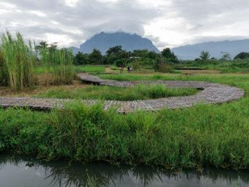 ทุ่งน้ำนูนีนอย ฟื้นฟูพื้นที่ชุ่มน้ำผสมแปลงนาอินทรีย์เชียงดาว จนปลากัดป่าและนกมาอยู่