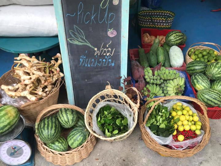 6 ร้านค้าแหล่งวัตถุดิบอินทรีย์ สดจากสวน ฟาร์ม และทะเลไทย คัดมาเน้นๆ ว่าดีต่อเราและโลก