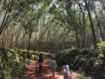 บันทึกครูอาสาที่ Wonder Valley โรงเรียนทางเลือกในหุบเขา โอบล้อมด้วยป่ายางหาดใหญ่