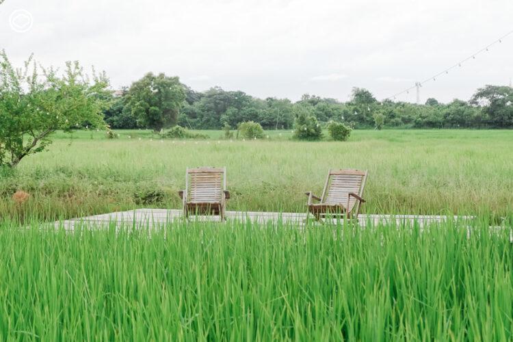 10 พื้นที่สีเขียวของเกษตรกรชาวยโสธร ที่ยืนยันว่าเมืองนี้โดดเด่นเรื่องเกษตรอินทรีย์
