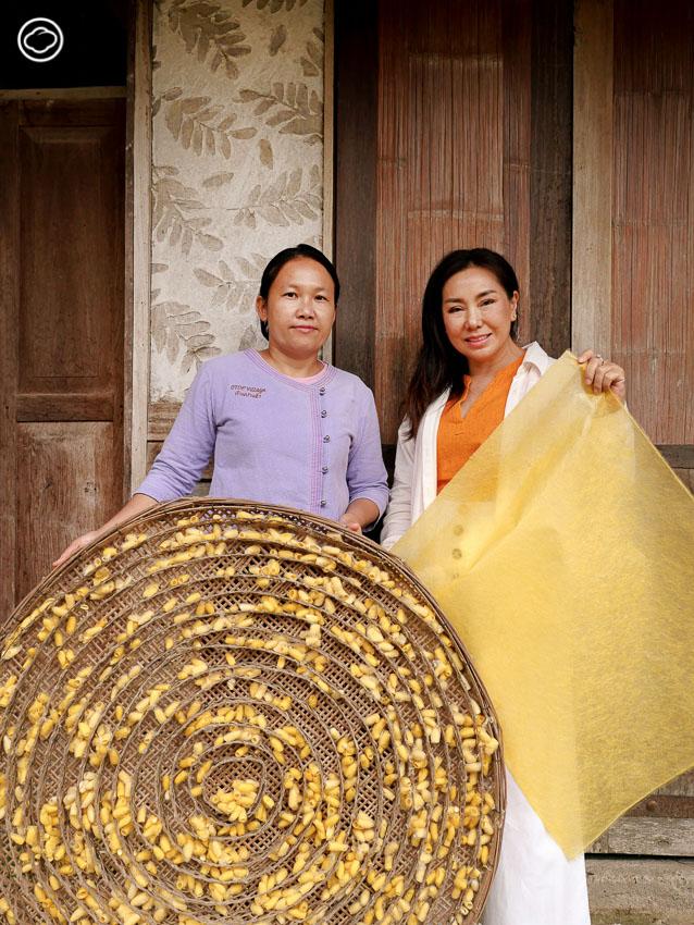 CEILK มาสก์ใยไหมทองคำเจ้าแรกของไทย ปลูกหม่อนเลี้ยงไหมเชียงรายที่ไม่ทำร้ายวงจรผีเสื้อ