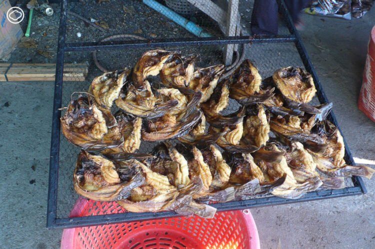 จากปลาดิบญี่ปุ่น ปลาหมักเย็นแบบสแกนดิเนเวีย ถึงปลากรอบแบบเขมร กับอีกหลายเมนูปลาหลากวัฒนธรรม