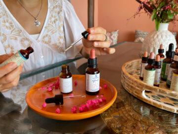 Flower Essence Therapy ศาสตร์สลายความเครียด ด้วยการดื่มน้ำค้างจากดอกไม้